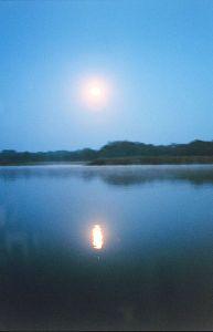 Pretty Moon
